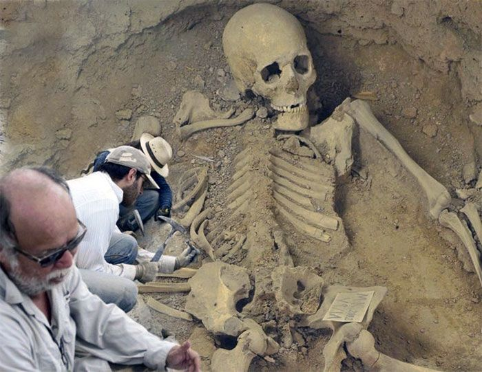 what does the 5m human skeleton found in australia mean? - ufo insight, Skeleton