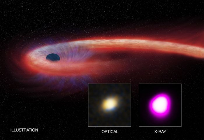 "Artist illustration depicting the record breaking ""tidal disruption event"" (TDE). The red shows hotter material that falls toward the black hole and generates a distinct X-ray flare. The blue shows a wind blowing from the infalling material. Credit: CXC/M. Weiss; X-ray: NASA/CXC/UNH/D. Lin et al, Optical: CFHT."