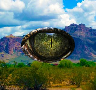 Reptile eye over mountains.
