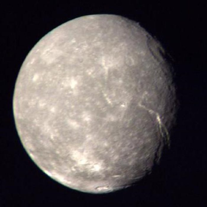 A close-up image of Titania