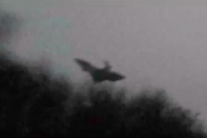 A picture claiming to show the Jersey Devil