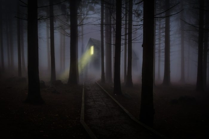 A picture of a Fog Cabin in woods