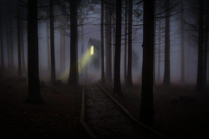 Fog Cabin