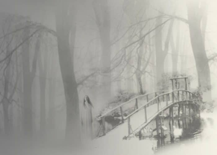 A picture of a snow covered bridge