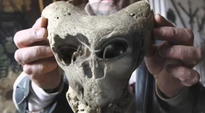 Caucasus Skull