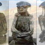 The Caspar Pedro Mummy