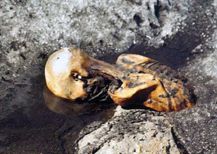 The Otzi Mummy face down as it was discovered