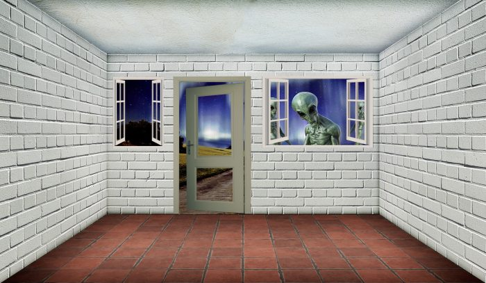 Depiction of an alien staring into a white room