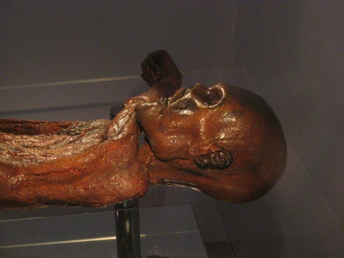 The Otzi Mummy on display