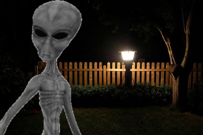 Garden Alien