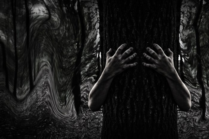 A picture of a tree with hands grasping it from each side