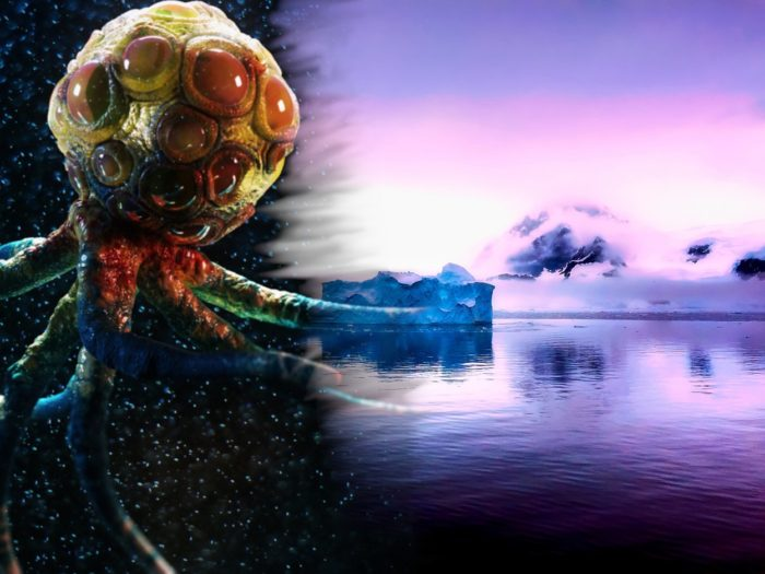 Artist's impression of Organism 46B