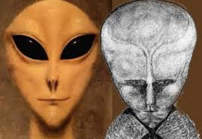 A depiction of a grey alien compared to a sketch of Lam