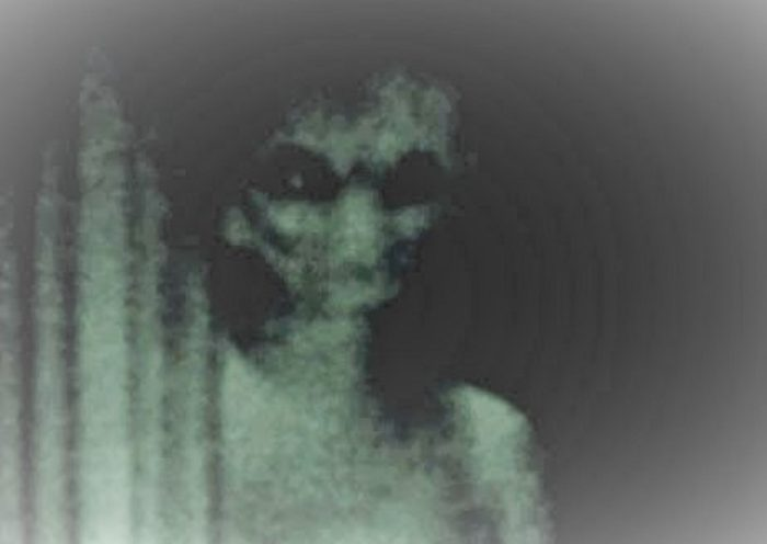 A picture claiming to show an alien being