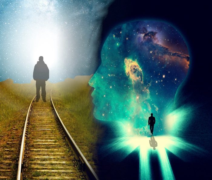 Reincarnation The Cosmos
