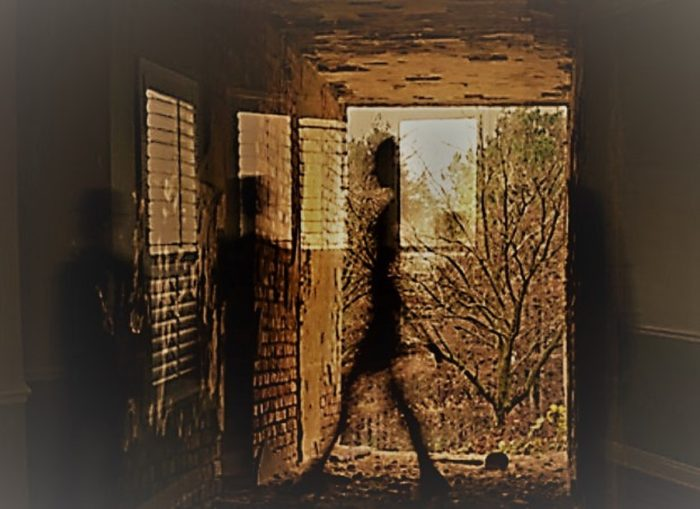 Depiction of Shadow People Entities