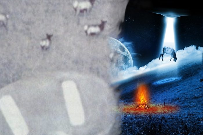 A blended picture showing two depictions of cattle abduction