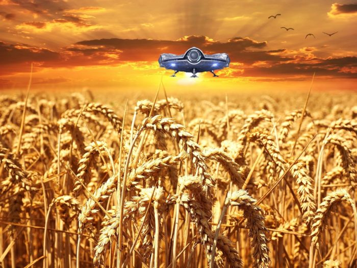 A superimposed UFO over a wheat field at dawn