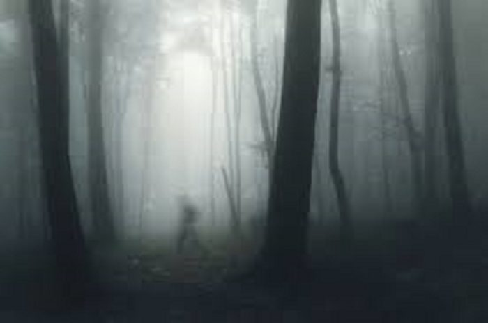 A shadowy person walking though a misty forest