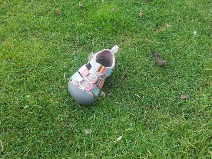 A lone shoe on the grass