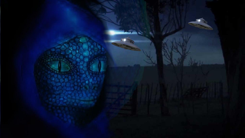 The Lacerta Reptilian Interview – A Case Study