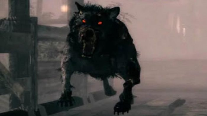 A picture of dog with red eyes about to attack