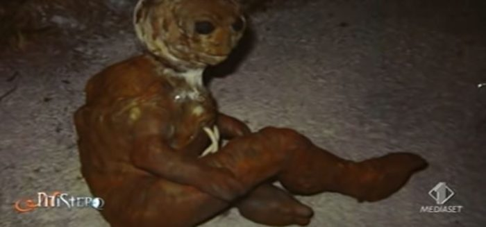A close-up of the alleged alien entity
