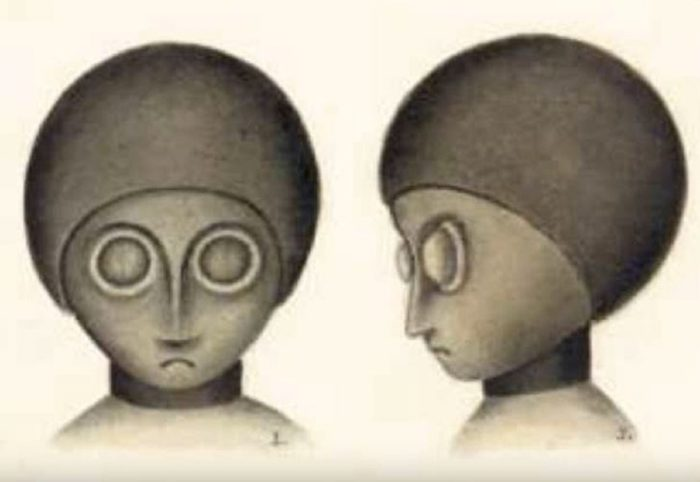 An artist's impression of the alien entities