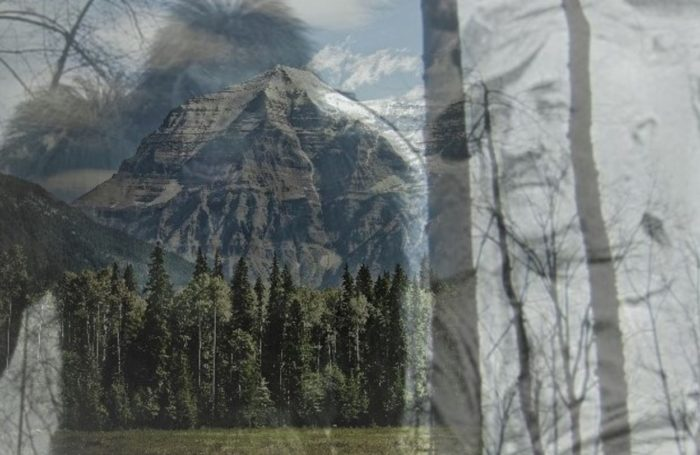 A picture of a Bigfoot creature blended into a picture of Albert Ostmen