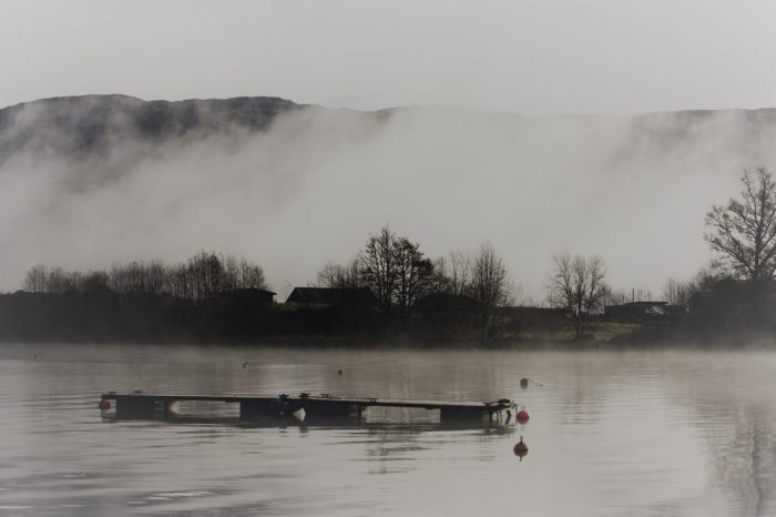 A picture of the Loch with mist at the water's edge