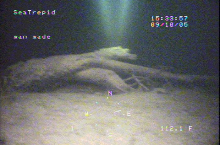 An image showing an alleged deep sea monster
