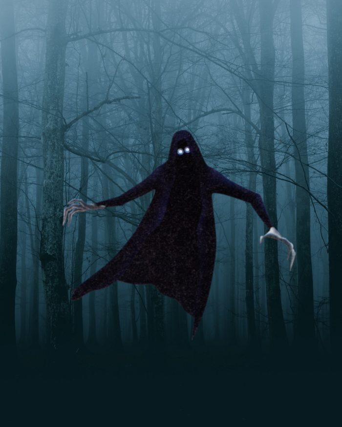 A dark forest with a strange floating hooded creature superimposed