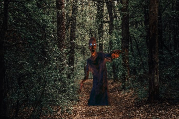 A picture of a forest with a monster-like creature superimposed over the top