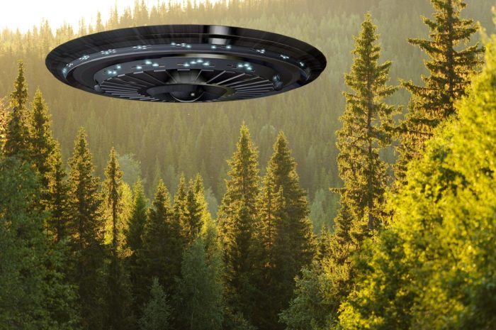 A superimposed UFO over a forest