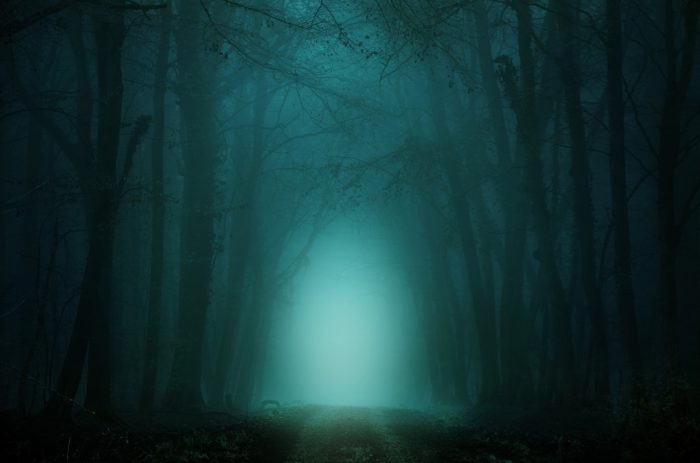 A picture of a strange glow in a wood at night