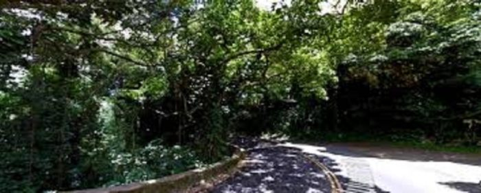 Picture of Morgan's Corner