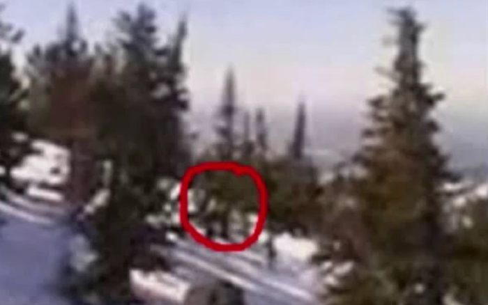 Picture claiming to show a real-life Yeti