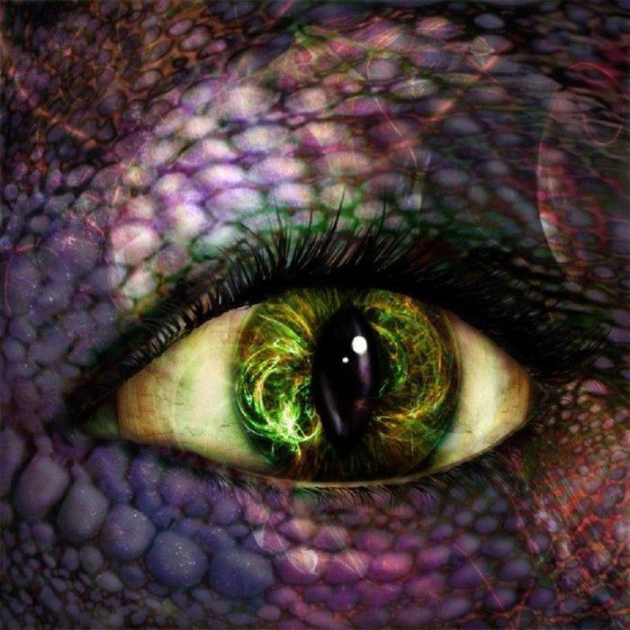 A close up of a reptilian eye