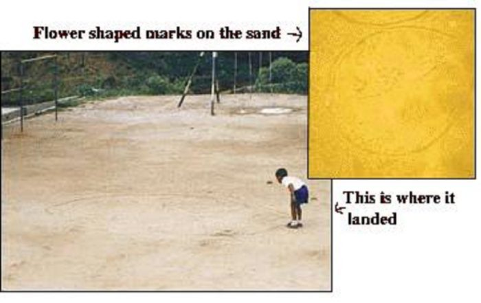 Picture from the newspaper report of the sighting