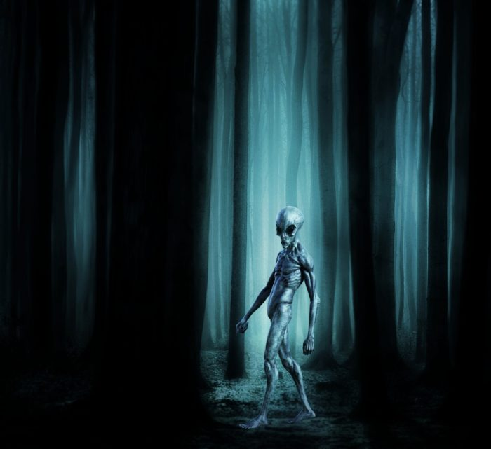Depiction of an alien