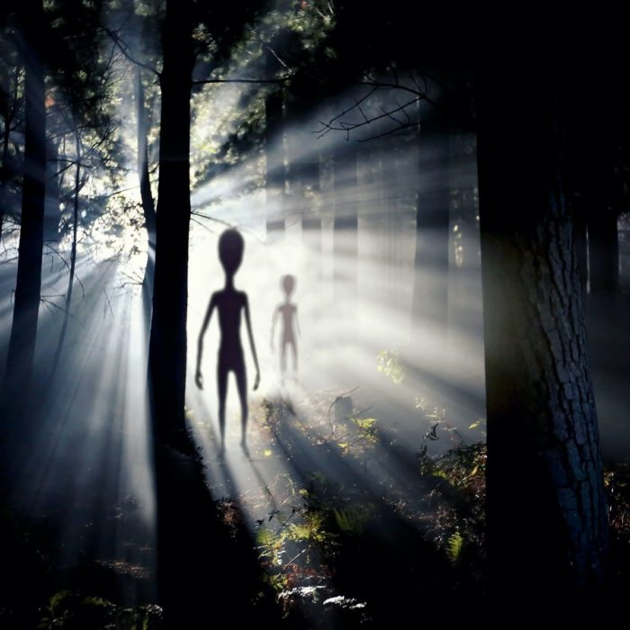 A depiction of aliens in the woods